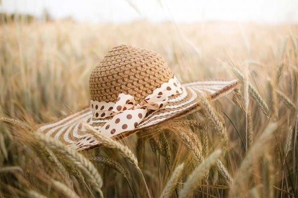 A large hat sits on top of wheat on a wheat field.