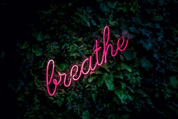 Neon pink breathe sign in a jungle floor.
